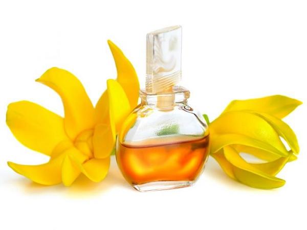 10 tinh dầu chống stress