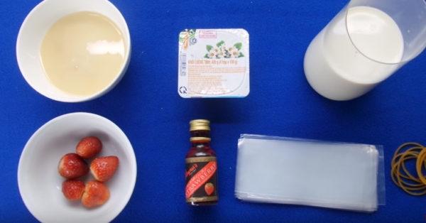 Các nguyên liệu làm sữa chua túi